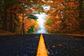 autumn-1758194_1280
