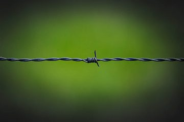 barbed-wire-250822_960_720-2