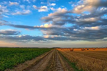Zonage agricole : Des ajustements qui doivent aller au-delà de l'article 185 du projet de loi 122 sur l'autonomie des municipalités