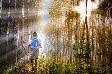 Suis la route qui mène à tes rêves…