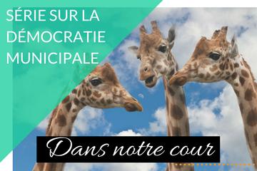 Ruelle, élections et girafes
